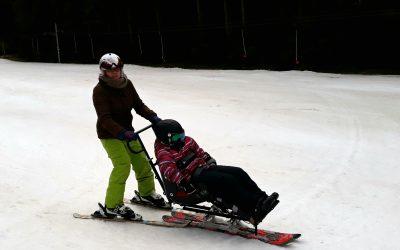 bi-ski