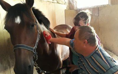 Terapie s koněm